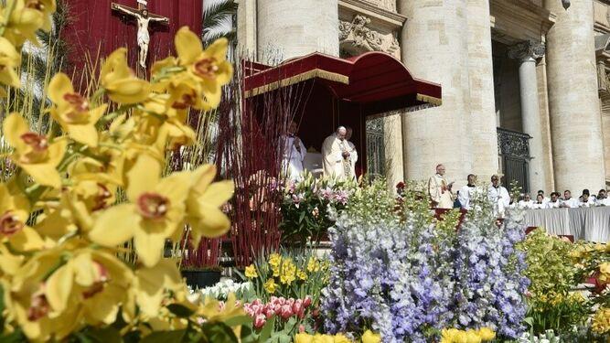 Papa de la primavera