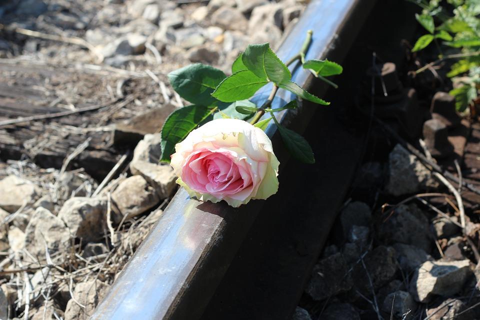 Recuerdo por el suicidio de un adolescente
