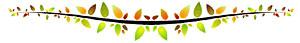 cenefaverde