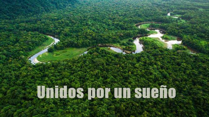 Amazonía palpitante
