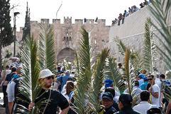 procesión-de-domingo-de-ramos-en-jerusalén-19219726