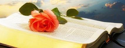 biblia348