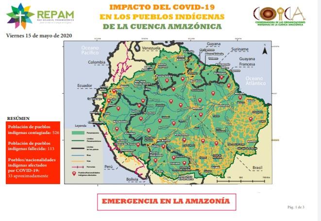 Informe COICA y REPAM