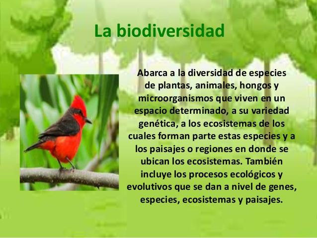 laboratorio-sobre-la-biodiversidad-2-638