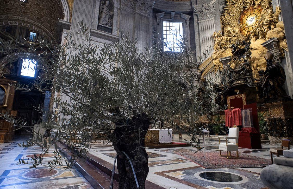 altare della catedra per domenica delle palme coronavirus