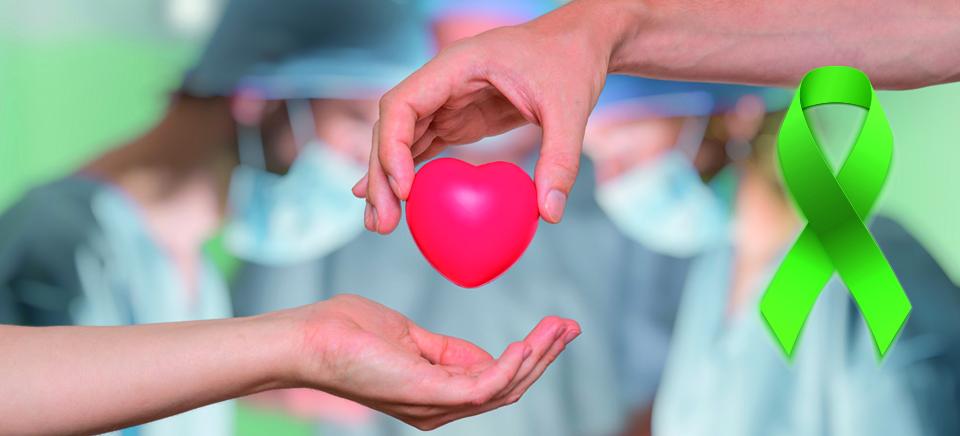 Dia-mundial-de-donacion-de-organos
