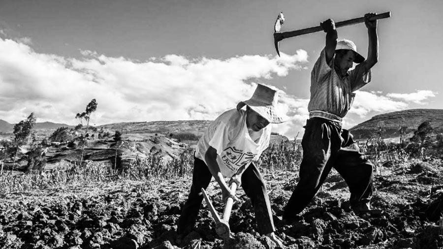 campesinos-chile-tierra
