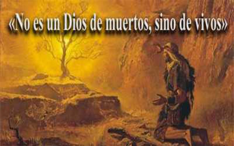 evangelio_262
