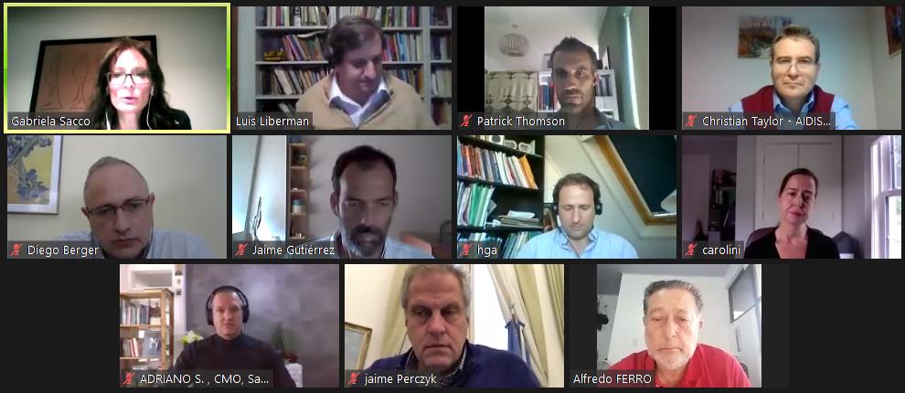Participantes del webinar