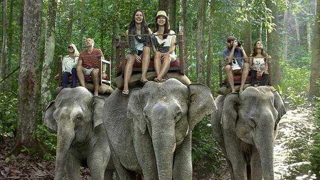 paseo-elefante--644x362