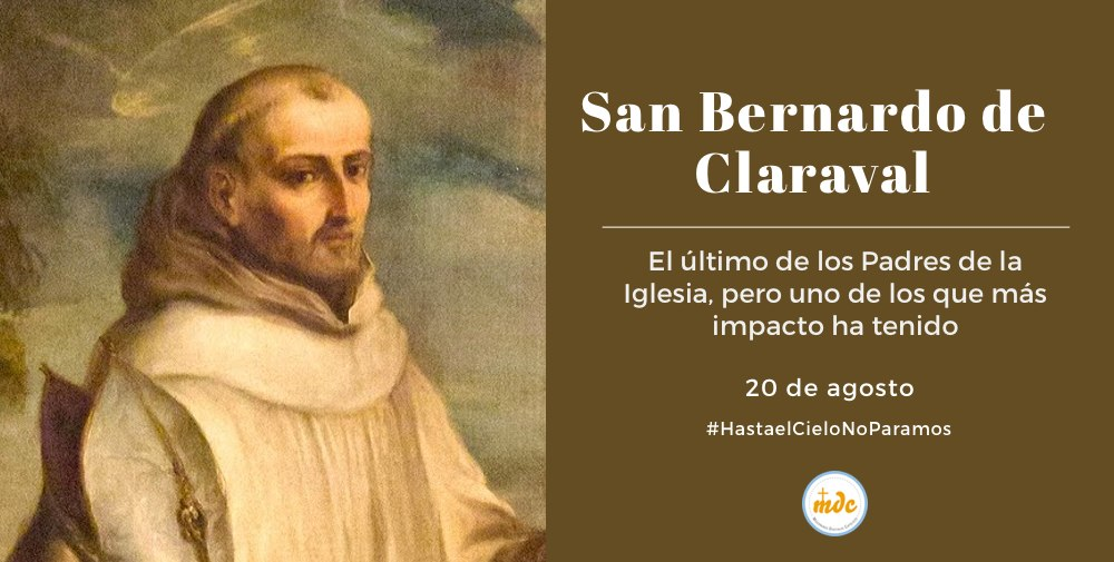 san-berrnardo-1000x500-1