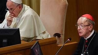 Cardenal Hummes en el Sínodo