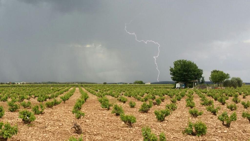 tormenta-campo-rayo