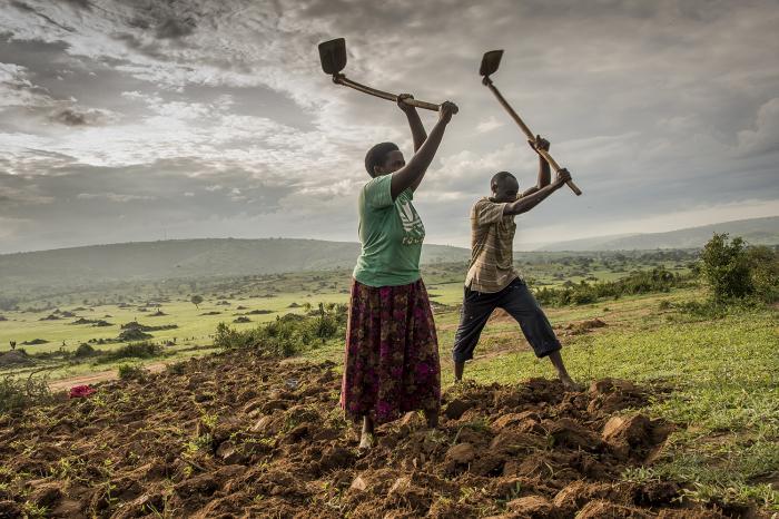 africanos_trabajando_en_el_campo