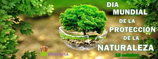 banner-proteccion-naturaleza-blog