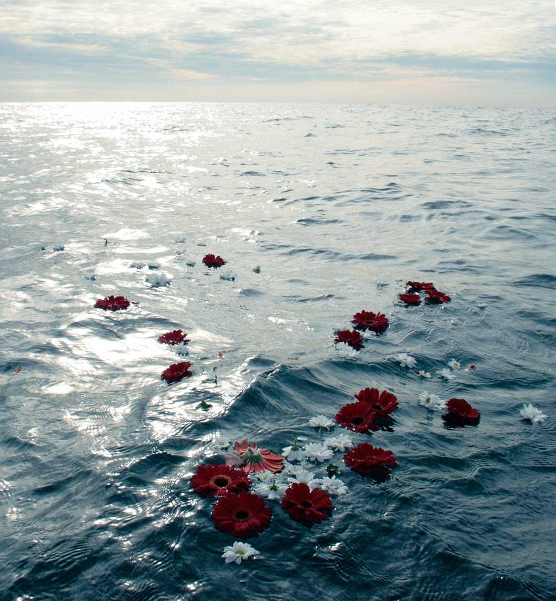 petalos-rosas-mar-ecofunerales