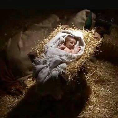 niño jesús representación en vivo