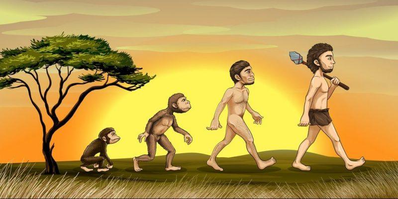 evolucion-del-hombre-e1534180281493