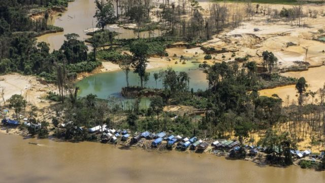 Garimpo Terra Yanomami